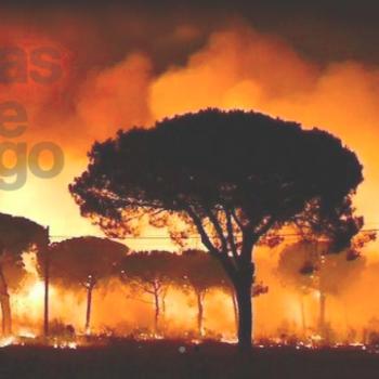 Foto de DÍAS DE FUEGO