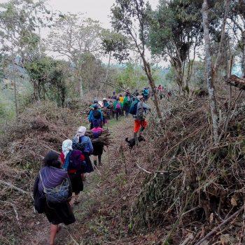 Foto de ROCÍO HEREDIA RECUERDA LAS TRADICIONES AMAZONAS DE SU MADRE: ¡VAMOS A MINGUEAR POR 28 DE JULIO!
