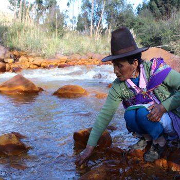 Foto de HUARAZ: INICIATIVA DE BIORREMEDIACIÓN ES FINALISTA EN CONCURSO MUNDIAL